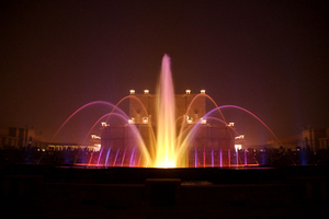 China Factory Supply Music Dancing Fountain